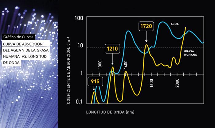 Curva de absorción del agua y de la grasa humana vs. Longitud de onda
